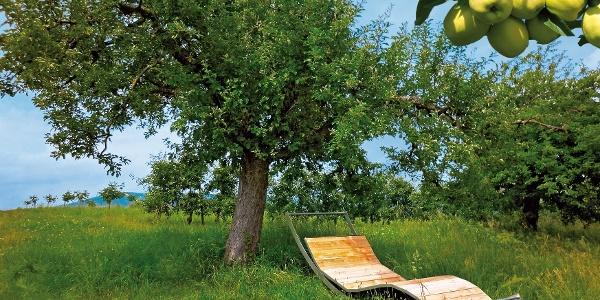 Apfelbaumeln