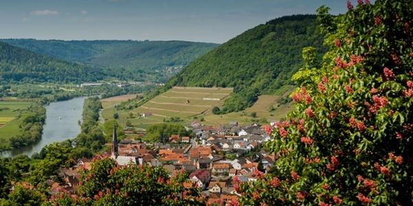 Blick vom Kloster Engelberg auf Großheubach