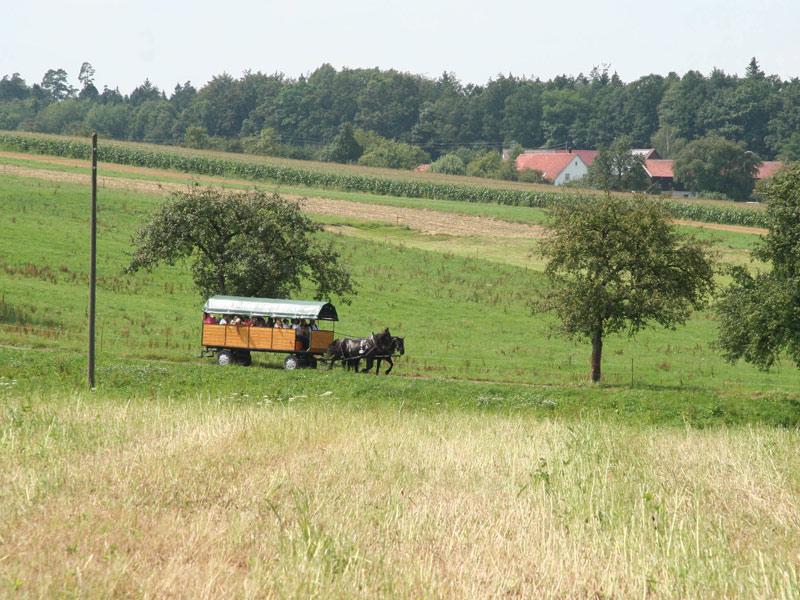 Kutsch-/Planwagenfahrten Familie Jäger   - © Quelle: Hohenlohe + Schwäbisch Hall Tourismus e.V.