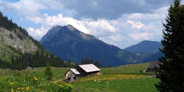 Hinteregger Alm ~1260 m mit Bosruck