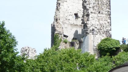 Drachenfels-Ruine