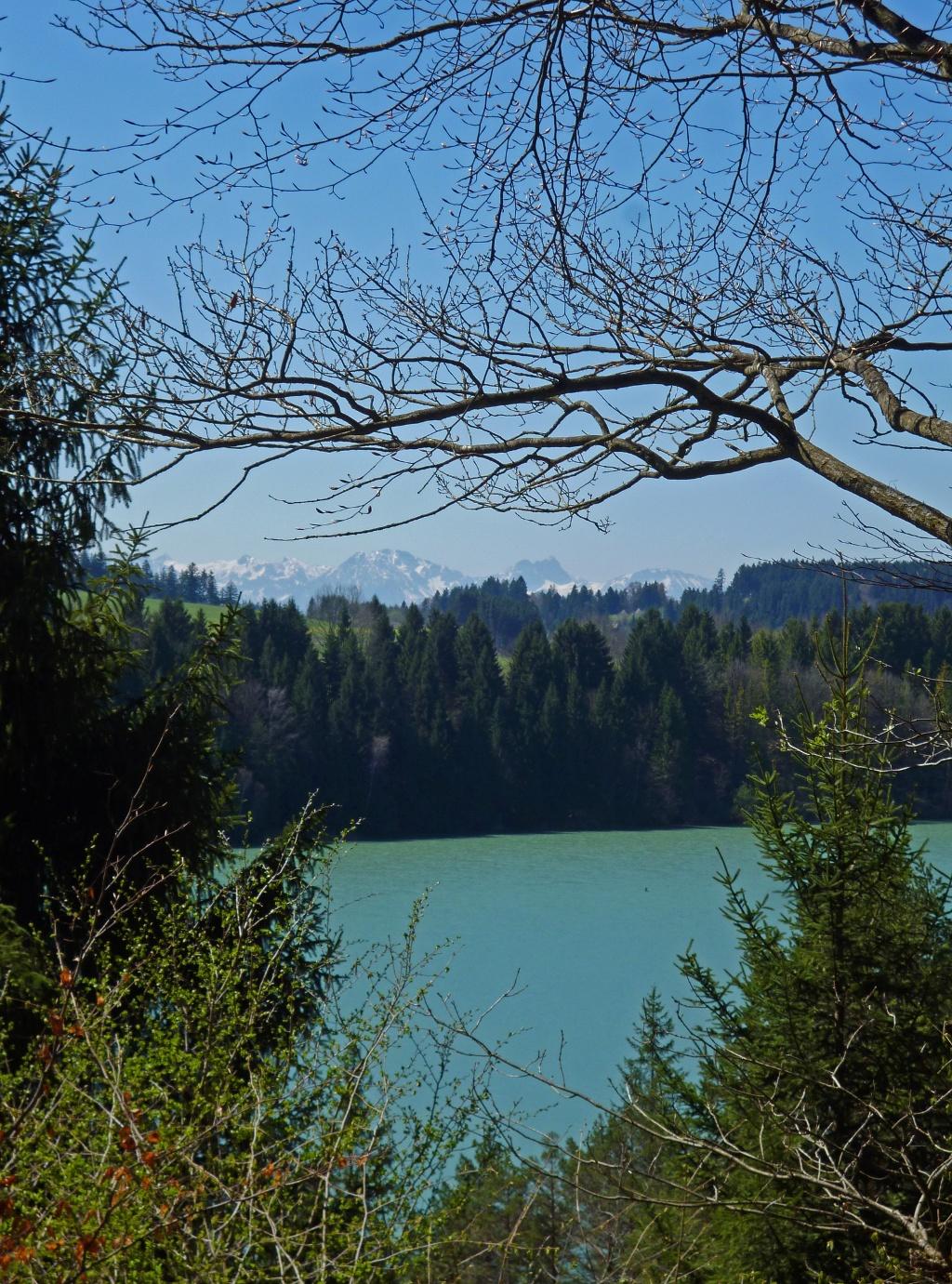 Wunderschöner Blick vom Rand der Heidewiese auf den Lech und die Alpenkette. (Monika Heindl)