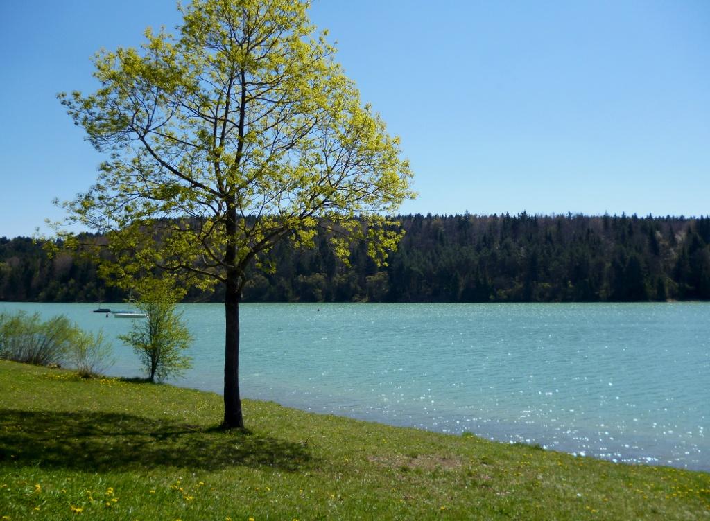 Das Lechbad Lido - ein beliebter Badestrand am Lechstausee südlich von Schongau. (Monika Heindl)