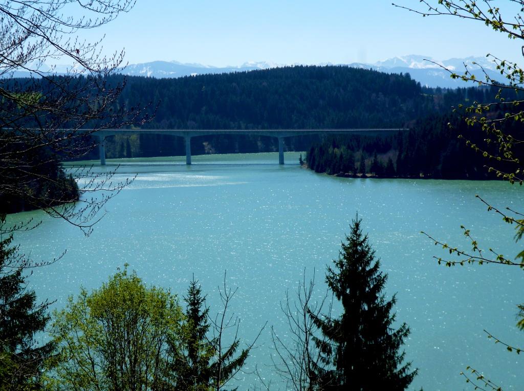 Westlich von Dornau bietet sich am Waldrand ein eindrucksvoller Blick auf die Lechtalbrücke hoch über dem Lech und die dahinter emporragende Alpenkette. (Monika Heindl)