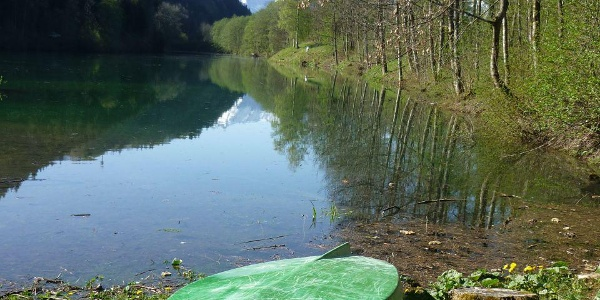 Kleinod Auwaldsee