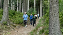 Grasellenbach: Nordic Walking Tour - Durchs Gassbachtal und rund um den Hammelberg