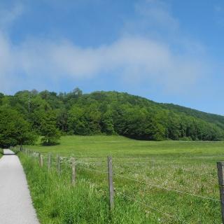 An den Wiesen entlang