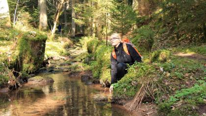 Genießerpfad Calw - Wasser hautnah im Rötelbachtal