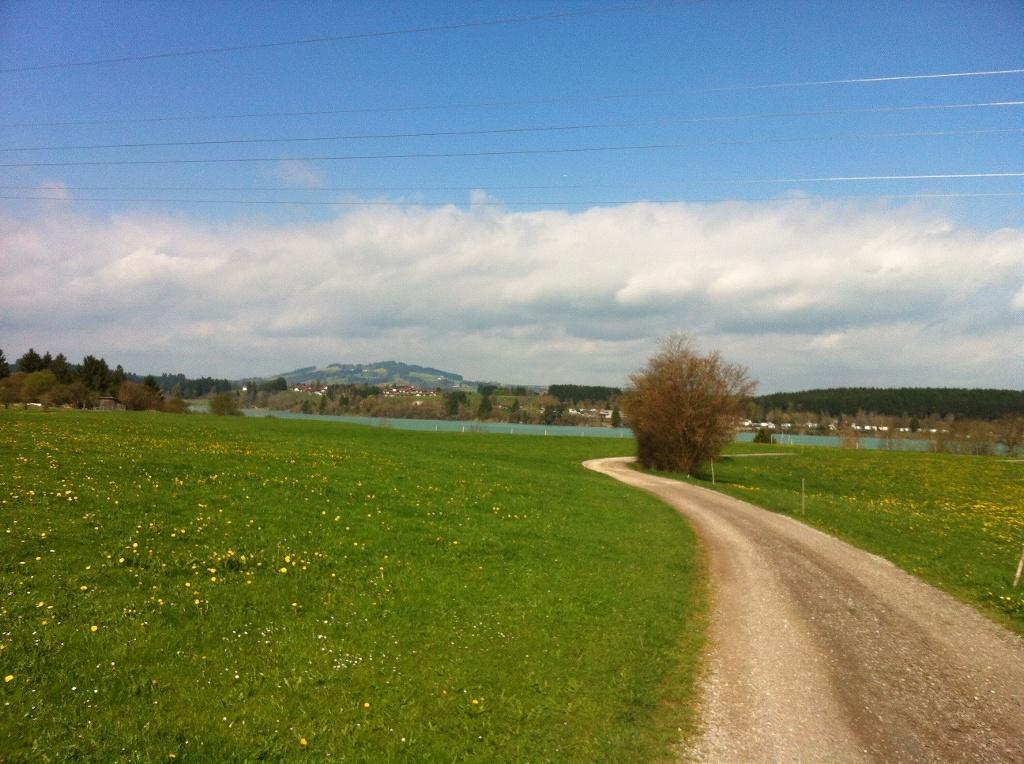 Weg zum türkisblauen Lechstausee (Antonie Schmid)