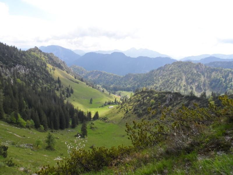 Ausblick auf die Almlandschaft