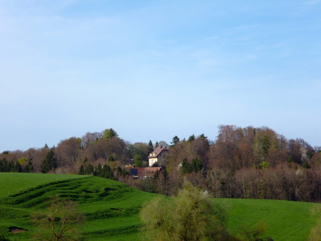 Wenig östlich von Eichendorf eröffnet sich ein schöner Blick auf das Schloss Hohenberg, das auf dem gegenüberliegenden Buckelsberg thront. (Monika Heindl)