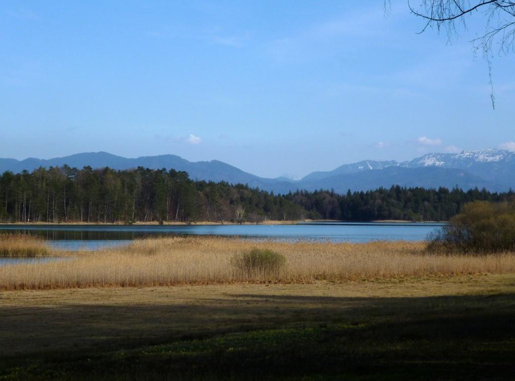 Wunderschöner Blick über den Breitenauer See auf die Alpenkette. (Monika Heindl)