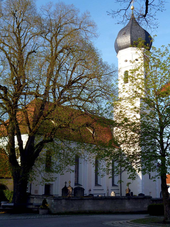 Die Pfarrkirche St. Vitus in Iffeldorf. (Monika Heindl)