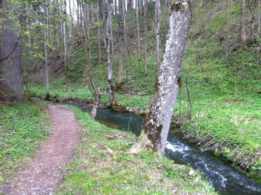 Idyllische Pfade führen am Mühlbach entlang (Antonie Schmid)