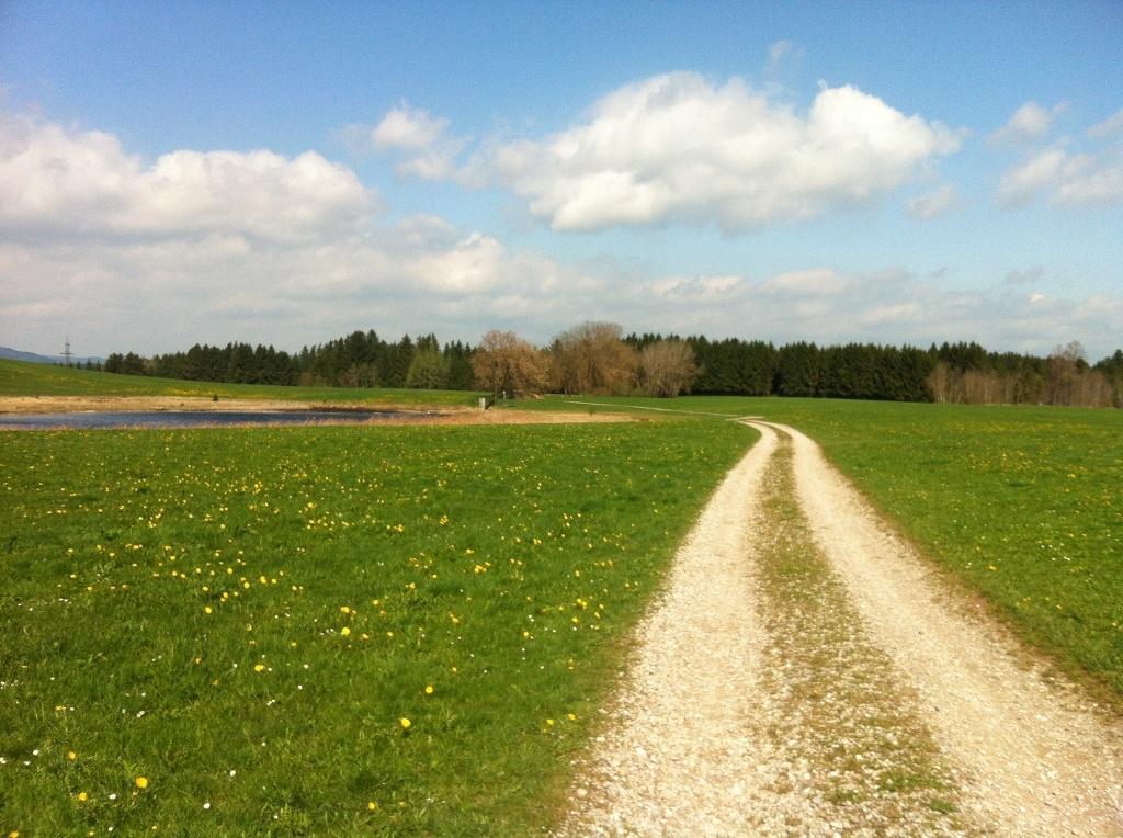 Schotterweg zum Storchenmoosweiher. (Antonie Schmid)
