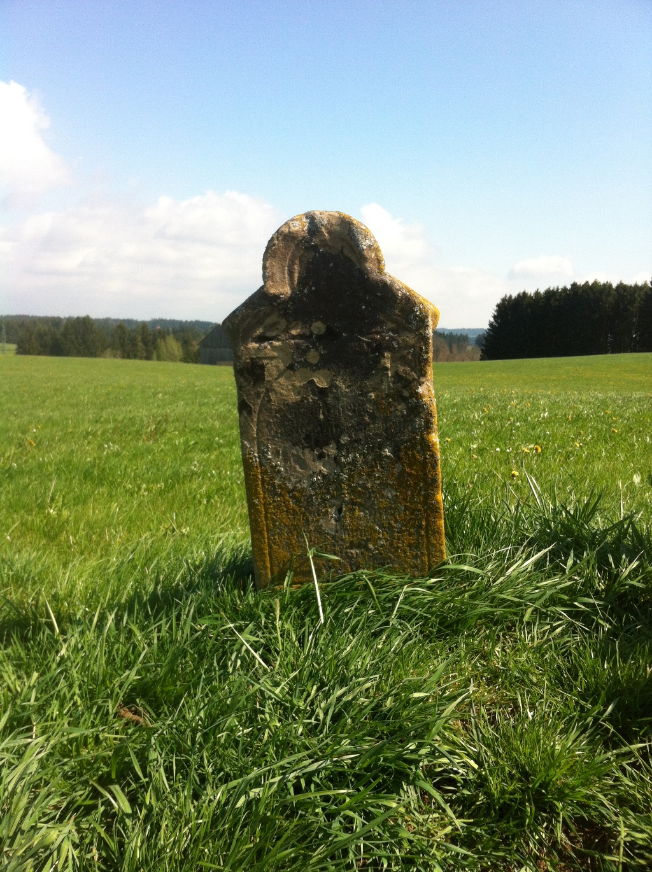 Inmitten der saftigen Wiesen befindet sich das kleine Wegkreuz (Antonie Schmid)