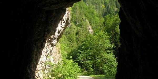 Einst fuhr die Waldbahn durch die vielen Tunnels, jetzt sind sie Teil des Radweges
