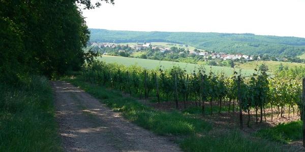 Impressionen rund um Braunweiler