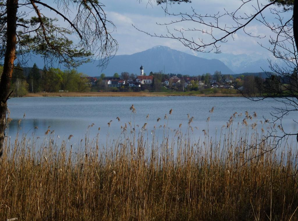 Vom Nordufer des Fohnsees bietet sich ein herrlicher Blick auf Iffeldorf. (Monika Heindl)