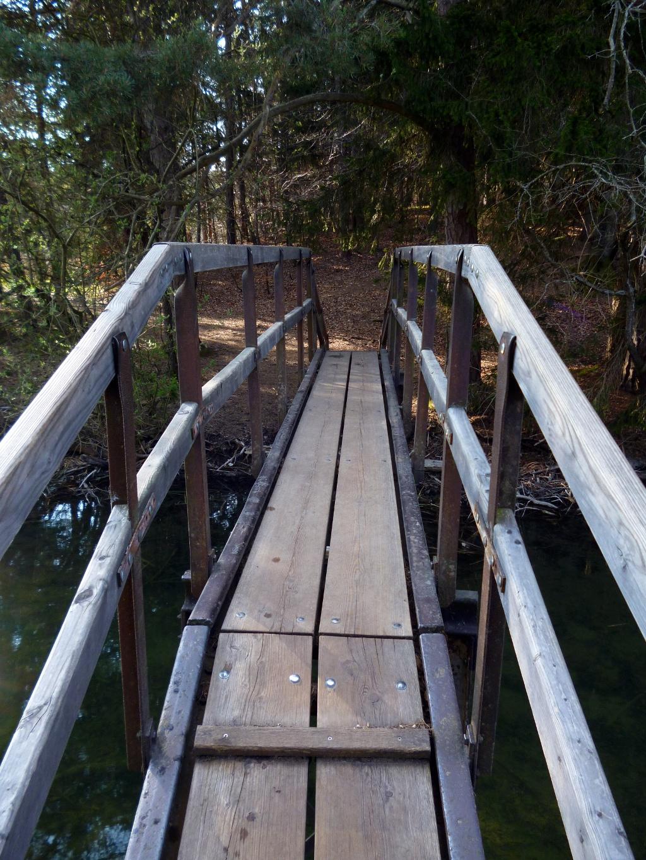 Eine steile Holzbrücke führt über den Bach zwischen Fohnsee und Staltacher See. (Monika Heindl)