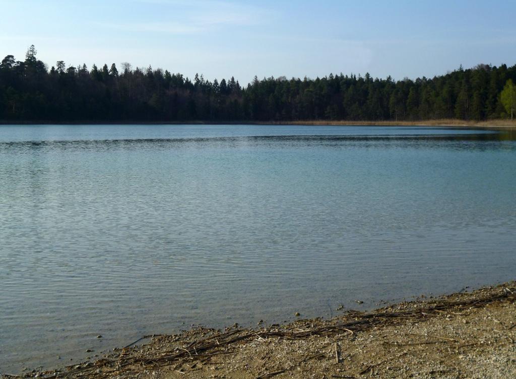 Am Badeplatz am Ostufer des Fohnsees lockt das in der Sonne glitzernde Wasser mit einer herrlichen Erfrischung. (Monika Heindl)