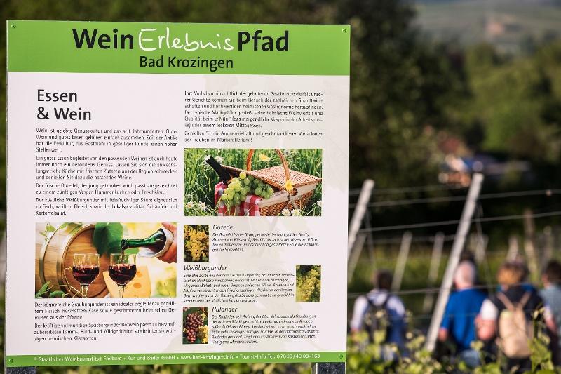Bad Krozingen Weinerlebnispfad Münstertal Staufen