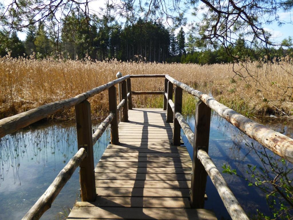 Ein Steg führt zur Blauen Gumpe, einem der vielen Quelltöpfe an den Osterseen. (Monika Heindl)
