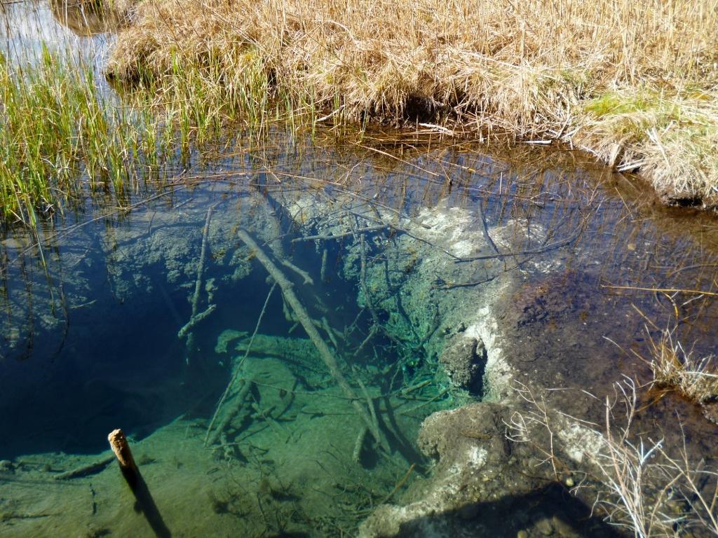 Durch das klare Wasser ist der trichterförmige Quelltopf vom Steg aus gut zu erkennen. (Monika Heindl)