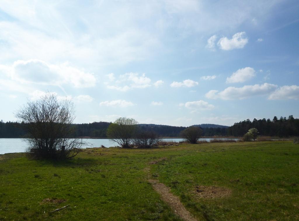 Die große Liegewiese am Badeplatz am nördlichen Ostufer des Großen Ostersees bietet sich zum Verweilen an. (Monika Heindl)