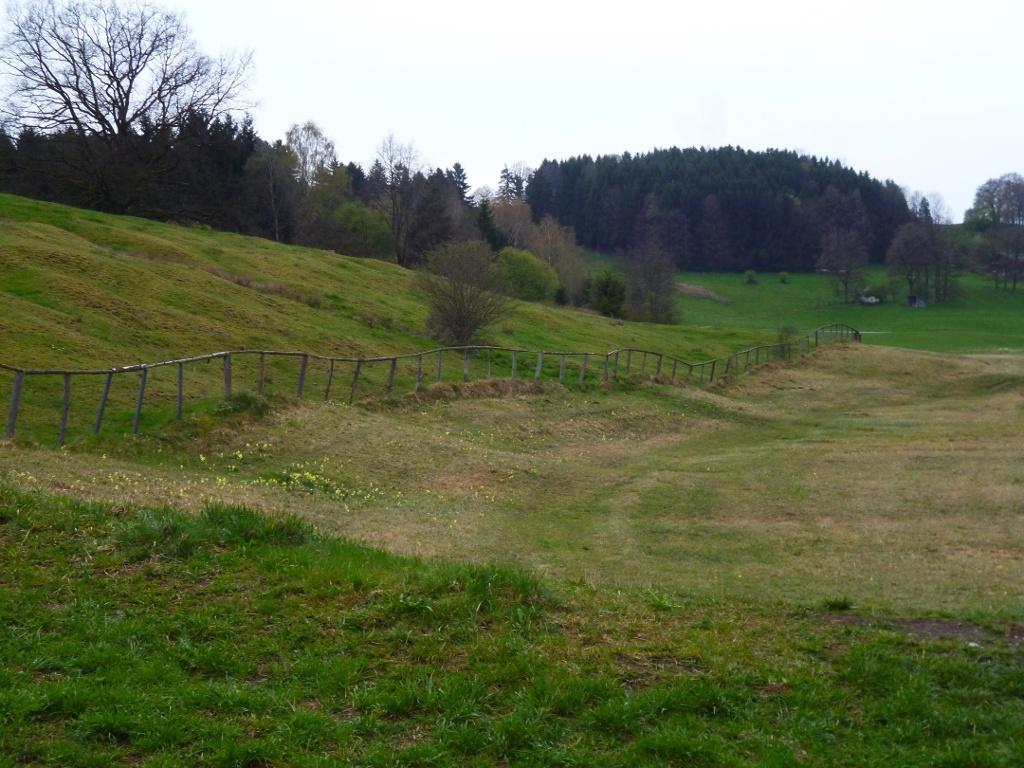 Ein unscheinbarer Wiesenpfad führt durch das Natura 2000-Schutzgebiet Grasleitner Moorlandschaft nach Oberhausen. (Monika Heindl)