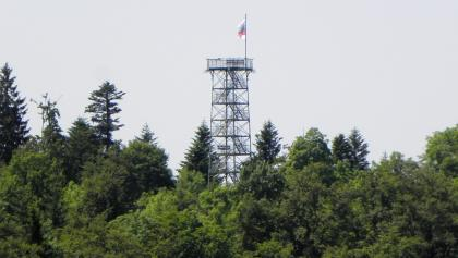 Blick vom Hochberg auf den Lembergturm