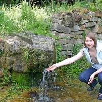 Wasser an der Kneipp-Oase
