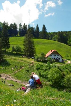 Hefter-Alm Mountainbiketour