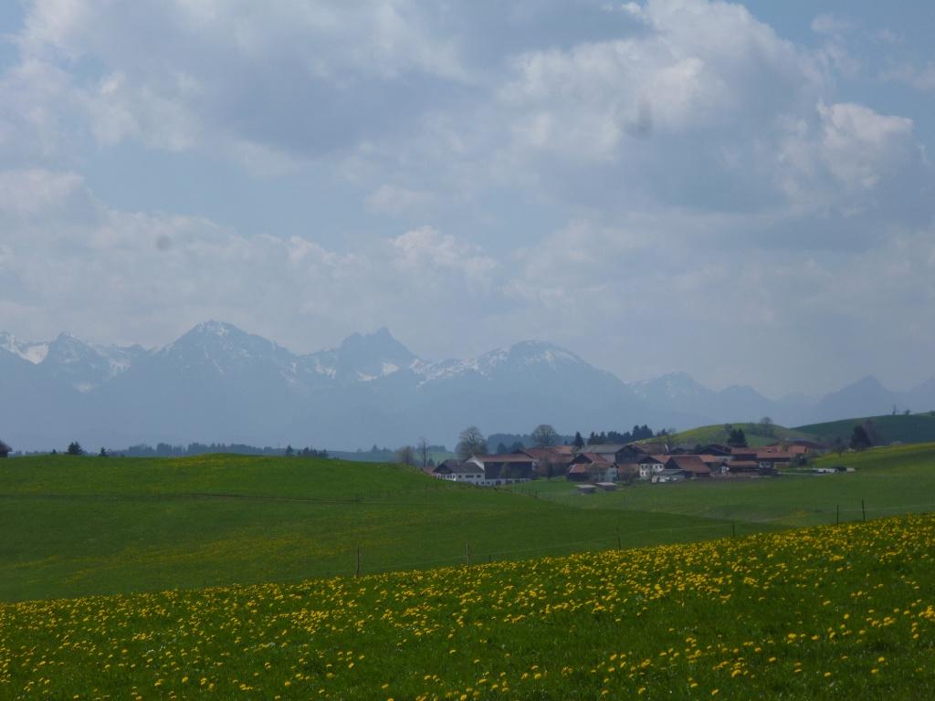 Südlich von Fronreiten bietet sich ein herrlicher Blick auf die Tannheimer und Allgäuer Alpen. (Monika Heindl)