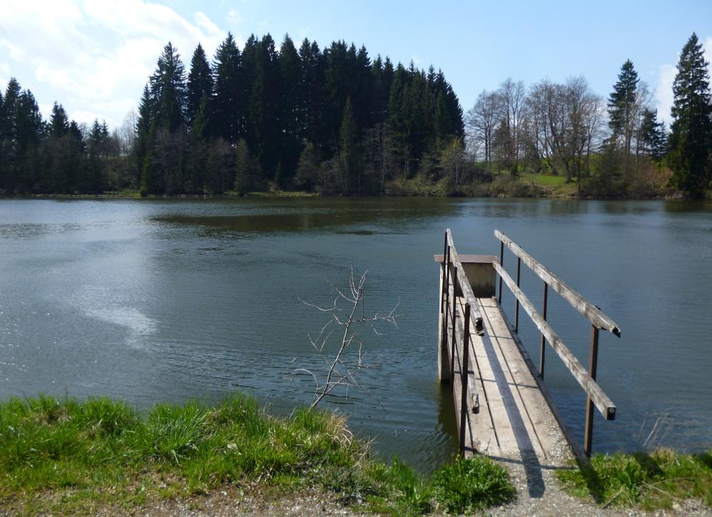 Ein kleiner Steg führt vom Ufer in den Fronreitner See. (Monika Heindl)