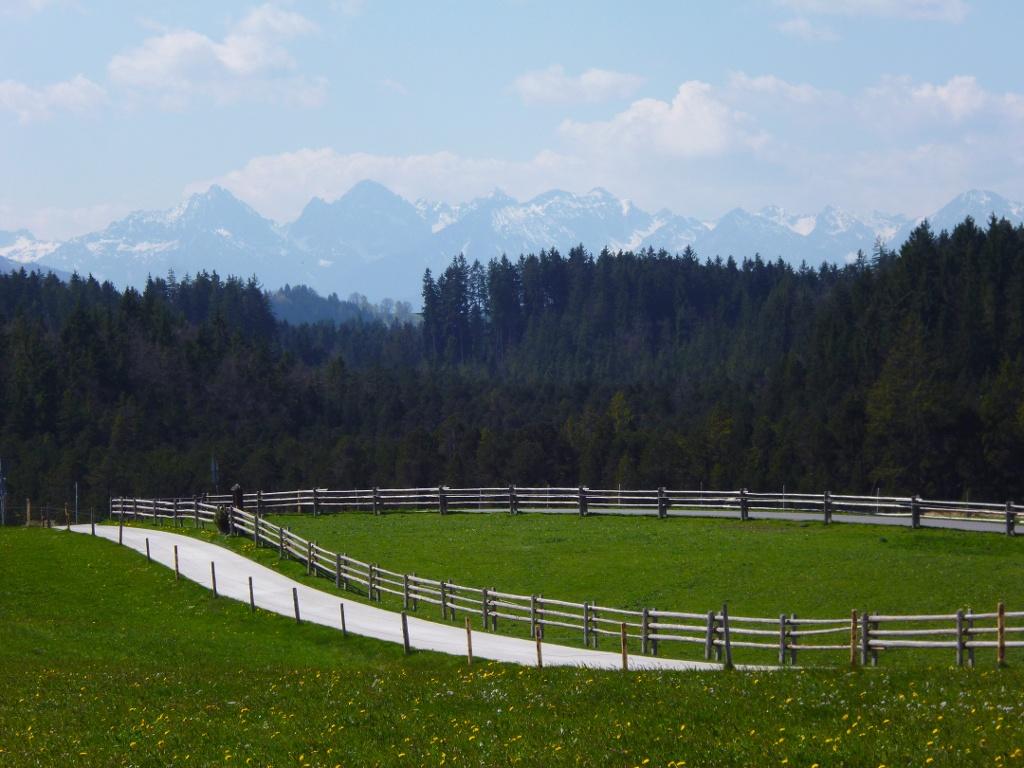 Begleitet von einem traumhaften Bergpanorama führt der Weg von der Wieskirche in Richtung Süden. (Monika Heindl)