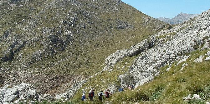 Abstieg vom Puig d'en Galileu in Richtung Coll des Telègraf.