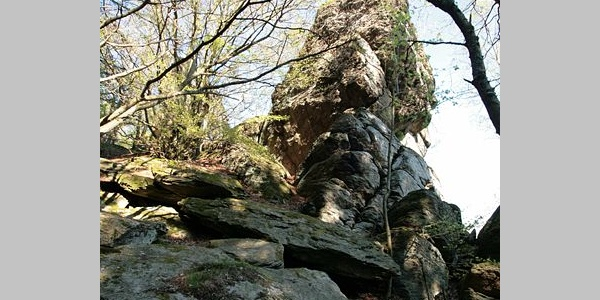 Rinsleyfelsen bei Saalhausen.