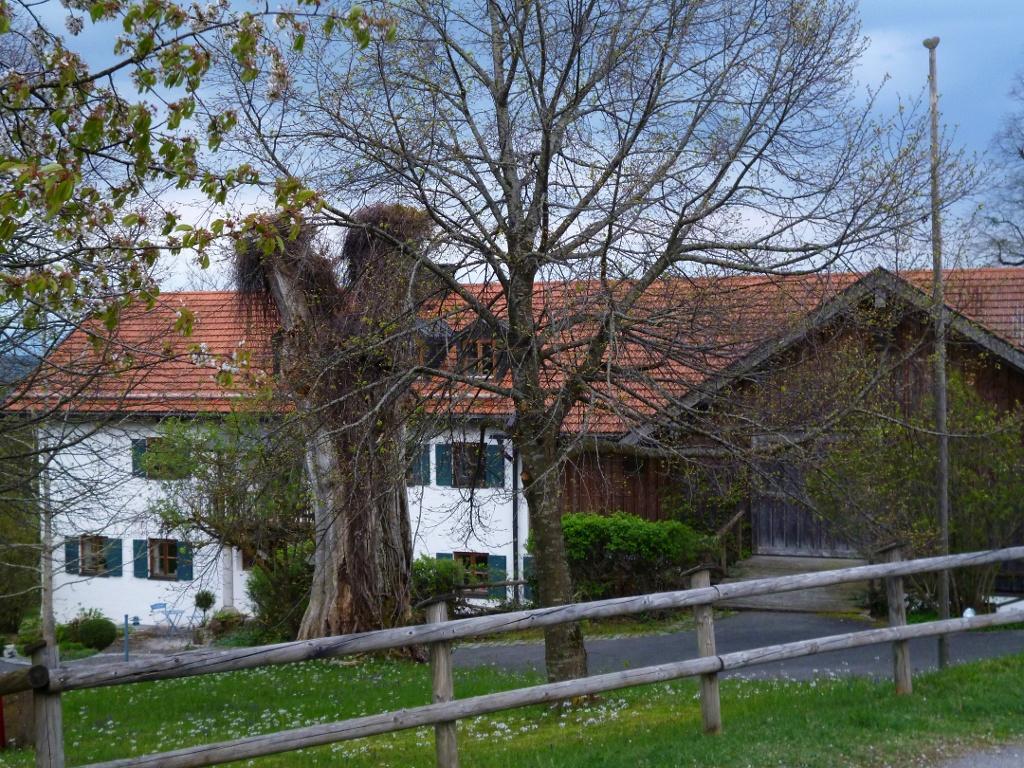 Das Anwesen Weinbauer oberhalb von Peißenberg. (Monika Heindl)