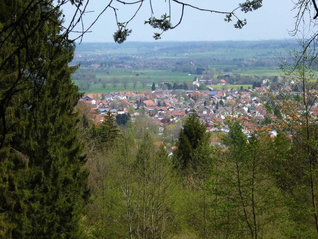 Am Rand einer Waldlichtung bietet sich ein schöner Blick auf Peißenberg. (Monika Heindl)