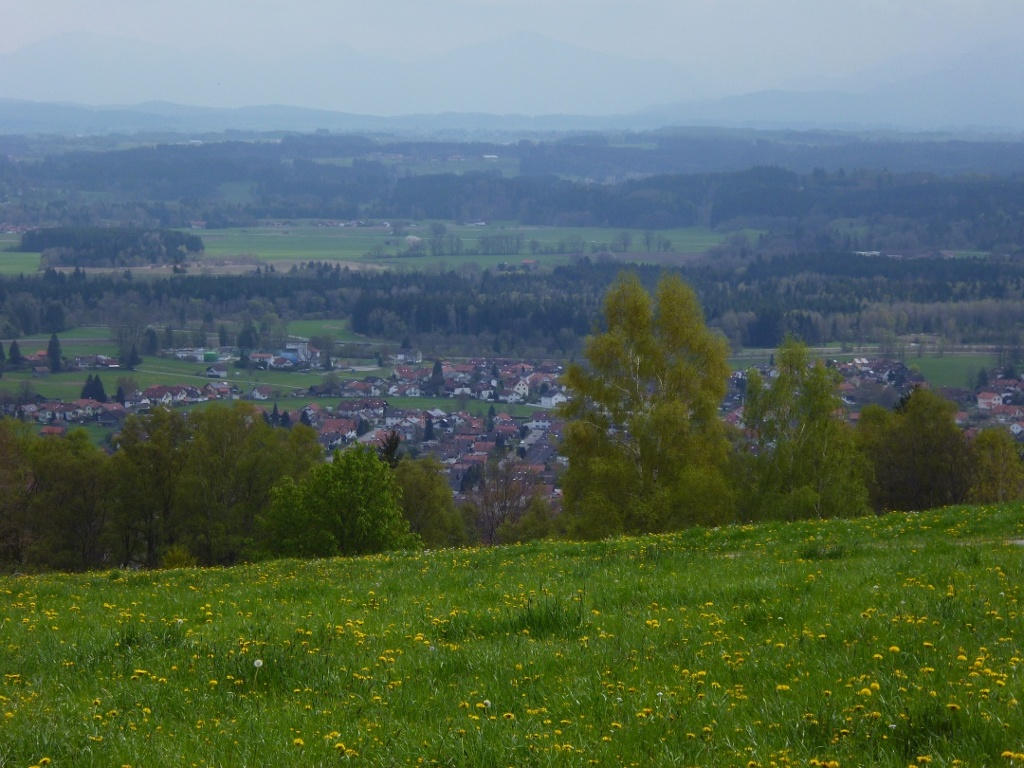 Schöner Blick auf Peißenberg vom Waldrand oberhalb des Weinbauers - dahinter sind die schwachen Umrisse der Alpenkette zu erkennen. (Monika Heindl)