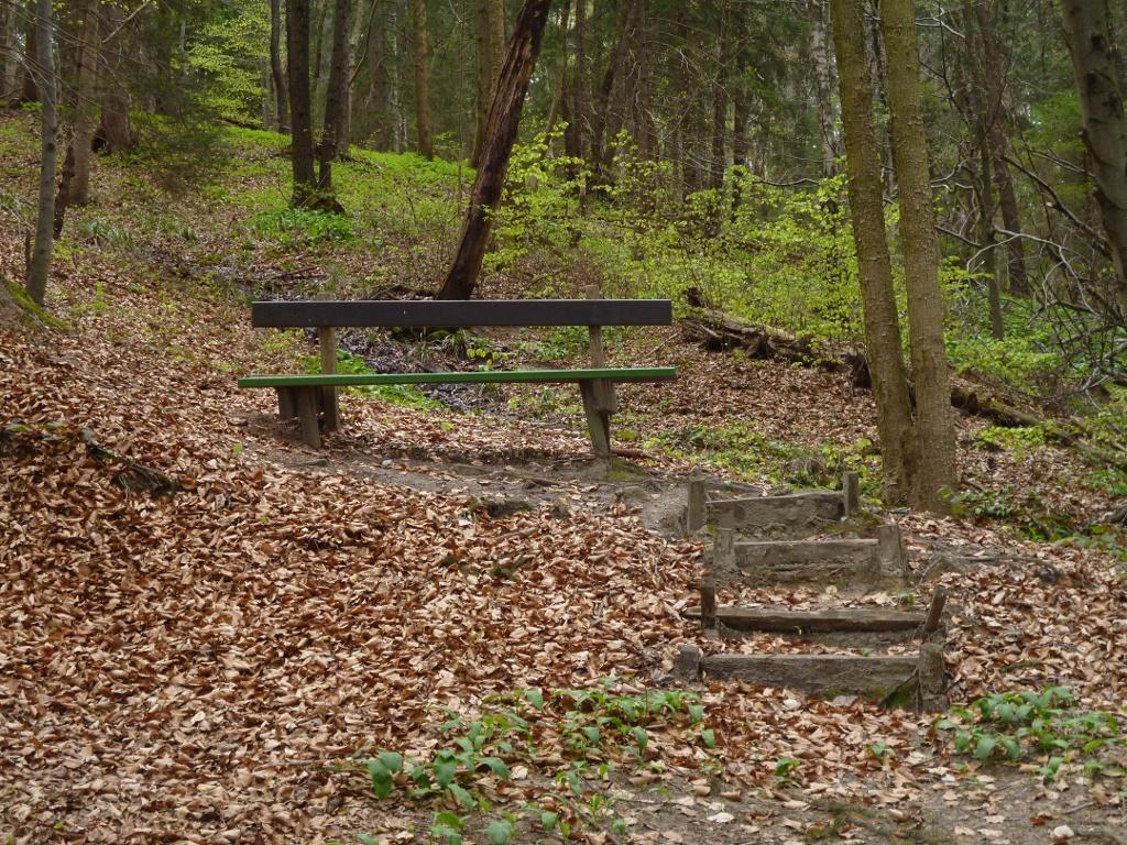 Bank am Wegrand tief im Wald. (Monika Heindl)