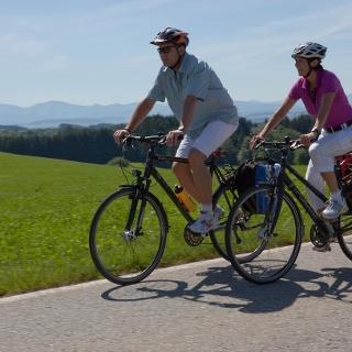Radfahren auf der Allgäuer Käsestraße - Käse und Kuh-ltur II