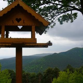 Vom Hohe-Loog-Haus schweift unser Blick über die Gipfel des Taubenkopfs und der Kalmit.