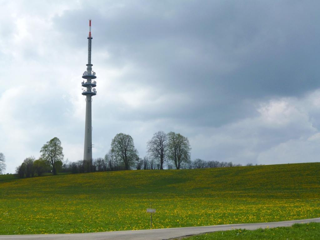 Stets den Fernsehturm im Blick, folgt man dem Weg an Oberschwaig vorbei in Richtung Wieser. (Monika Heindl)