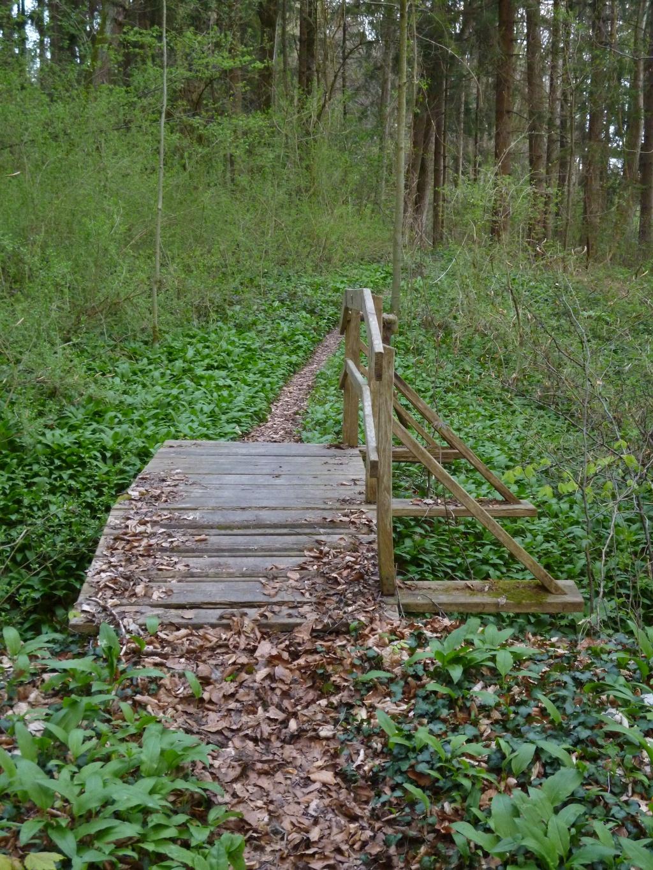Zahlreiche Brücken werden auf dem schmalen Pfad von Hohenpeißenberg in Richtung Osten überquert. (Monika Heindl)