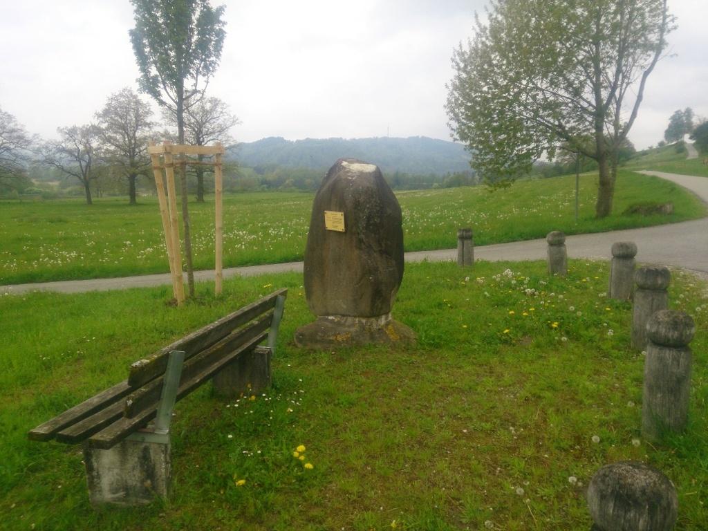 Findling Reiselsberger Sandstein (Joern Perschbacher)