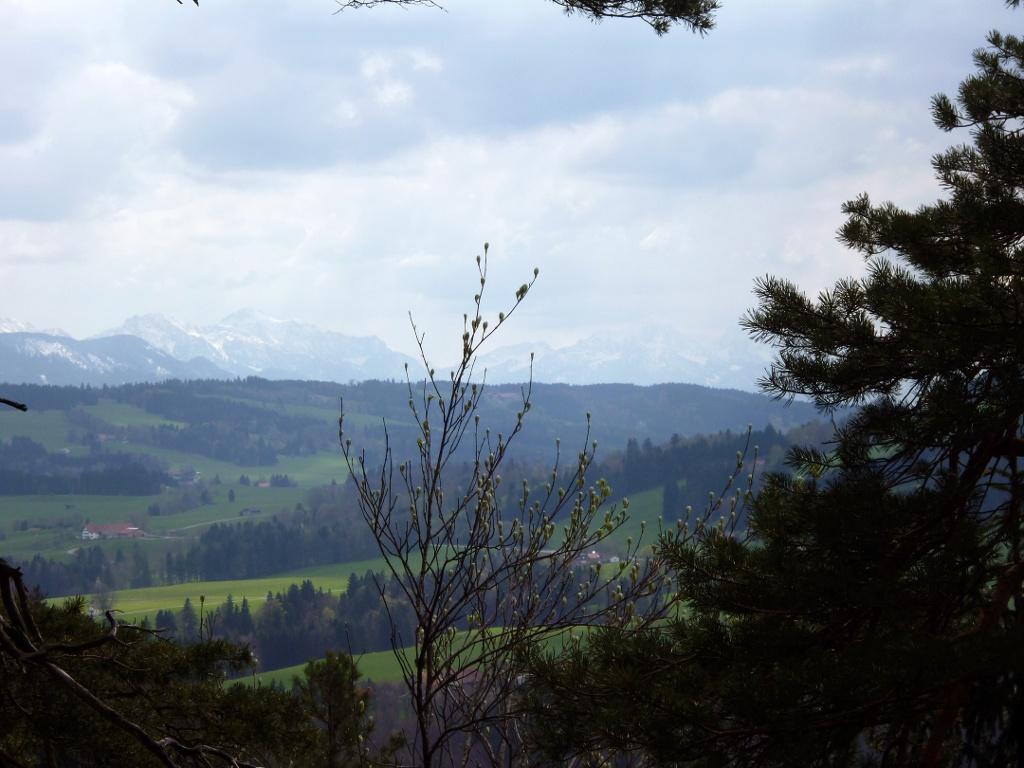 Vom Kreuz an der Schnalz bietet sich ein herrlicher Blick auf die Alpenkette. (Monika Heindl)