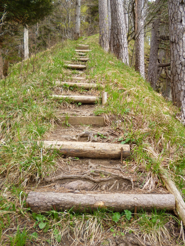 Unzählige Treppen gilt es auf dem Weg in Richtung Schnalz-Gipfel zu überwinden. (Monika Heindl)