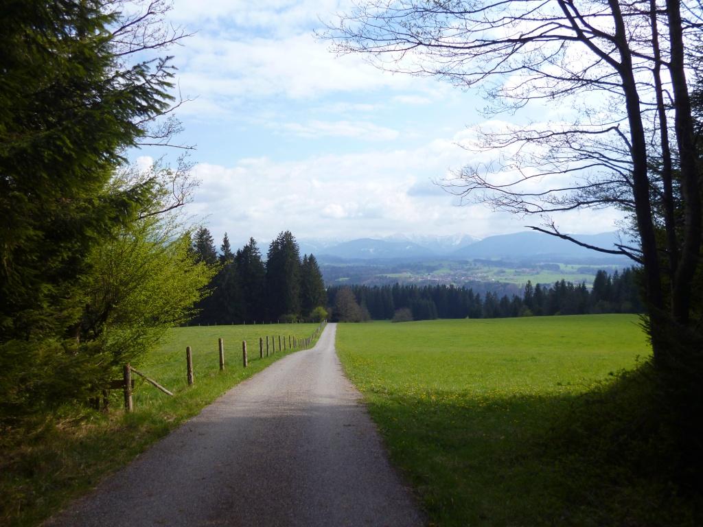 Direkt auf die Alpenkette zu geht es von der Schnalz hinunter nach Holzleithen. (Monika Heindl)